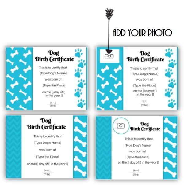Dog adoption certificate templates