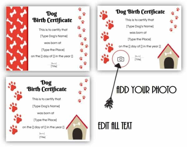 Dog birth certificate templatess